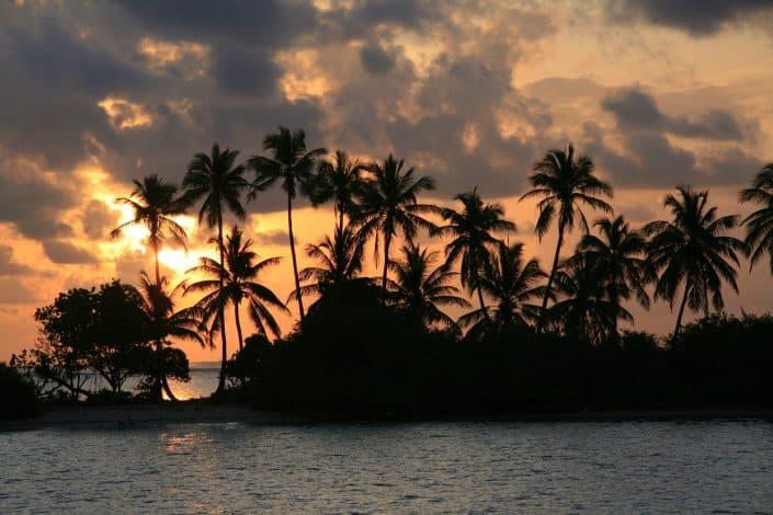 Iles sauvages en croisière plongée avec OK Maldives