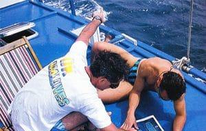 le sillage du dauphin bleu dans les années 1990 aux Maldives